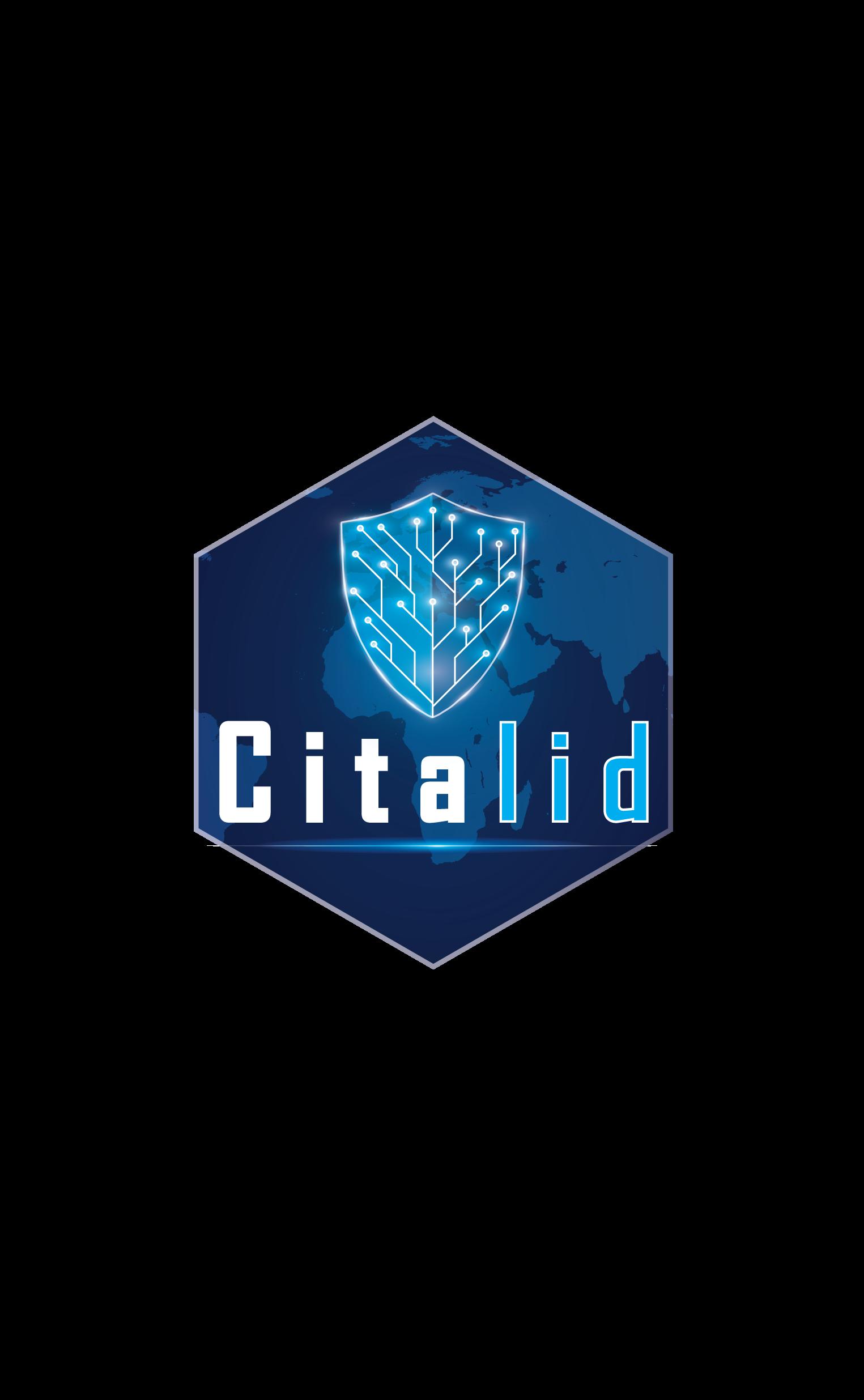 Citalid | Shake Up – La Cyber Threat Intelligence au service de l'optimisation des budgets cyber